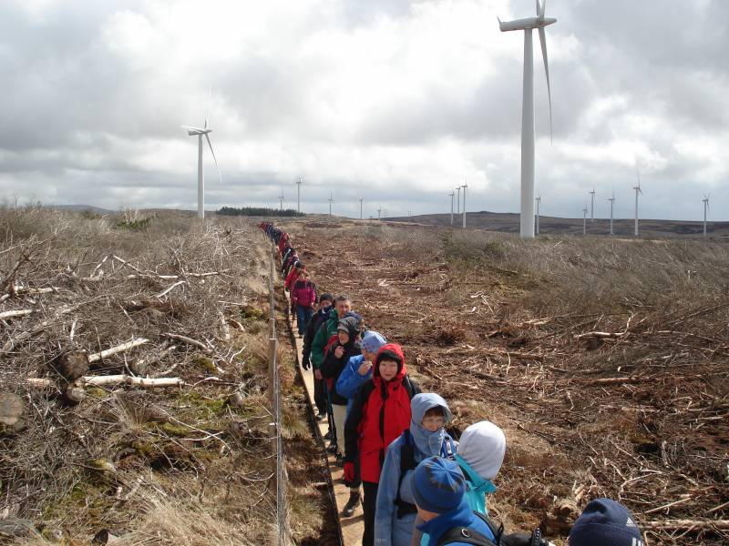 Walk through the Windfarm in Mullaghareireck Uplands, Sliabh Luachra